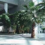 R Plaza 05